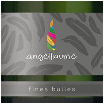 vignette_fines_bulles_blanc