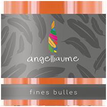vignette_fines_bulles_rose
